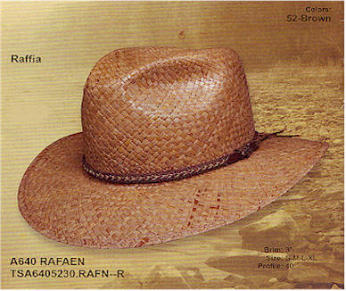Rafaen straw panama hat from Stetson
