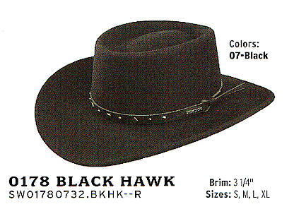 Black Hawk by Stetson Hats